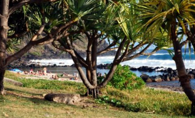 la plage de Grand Anse