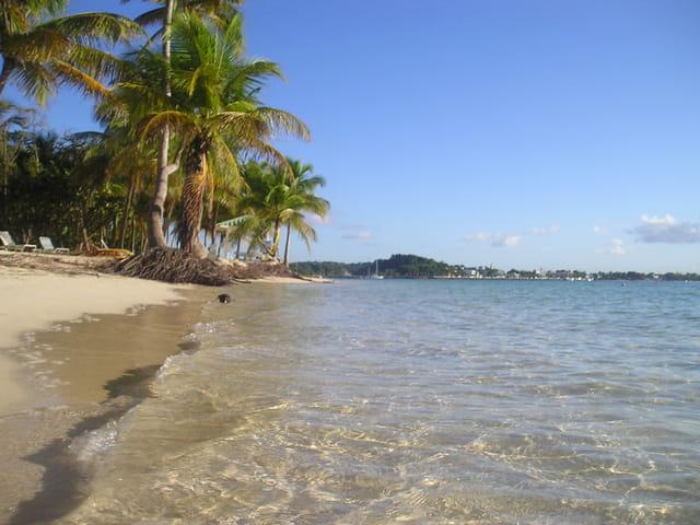 La plage de saint-anne