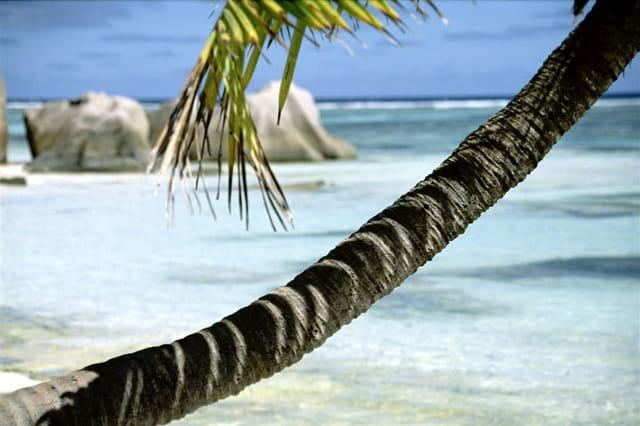 La plus belle plage du monde