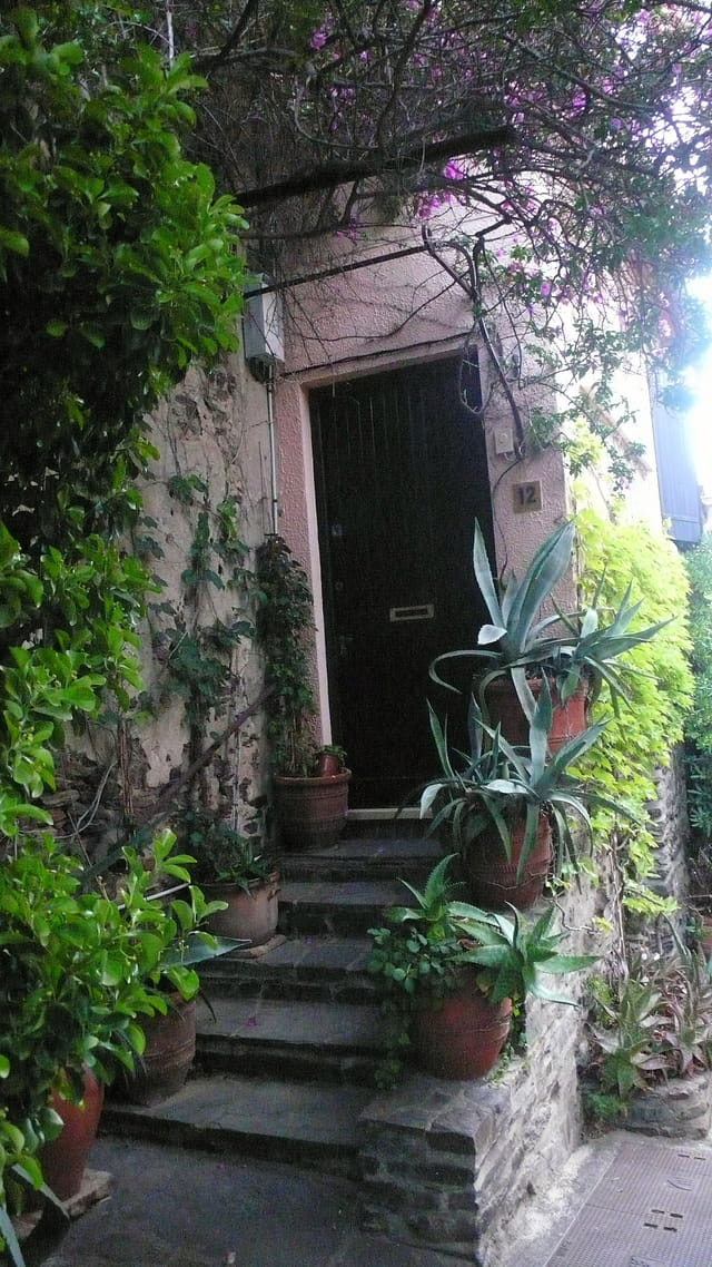 La porte aux cactus