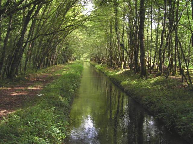 La rigole d'alimentation du Canal du Nivernais
