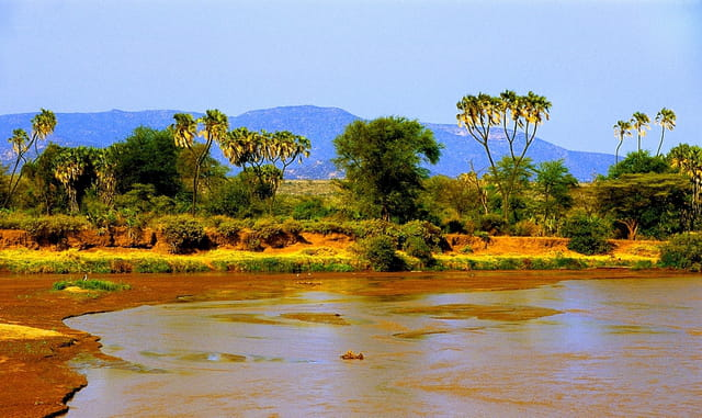 La rivière Uaso Nyiro.