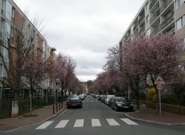 La Rue Robert Schuman, au Pecq