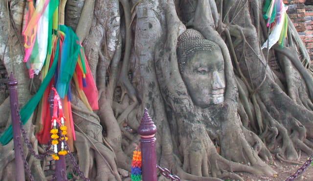 La Statue  Thaï entrelacée