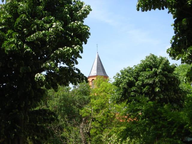 La tour dans les arbres