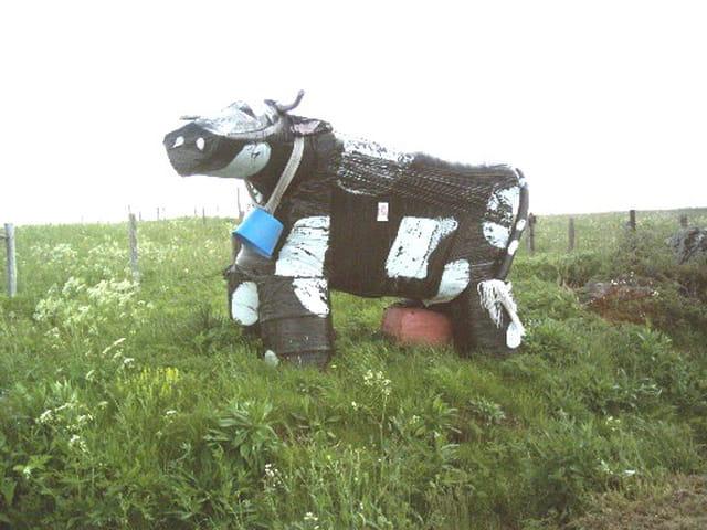 La vache saint nectaire