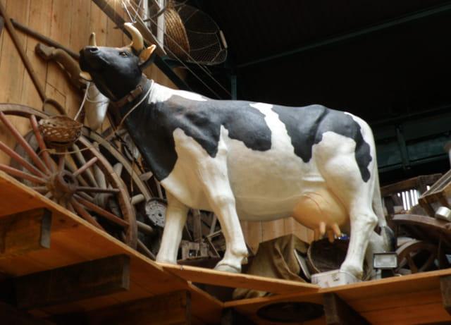 La vache sur l'étagère, de la Pataterie