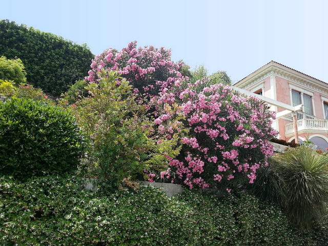 La villa  Ephrussi de Rothschild (1)