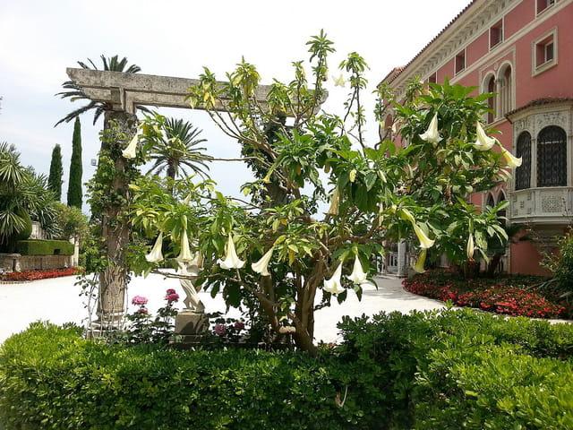La villa  Ephrussi de Rothschild (17)