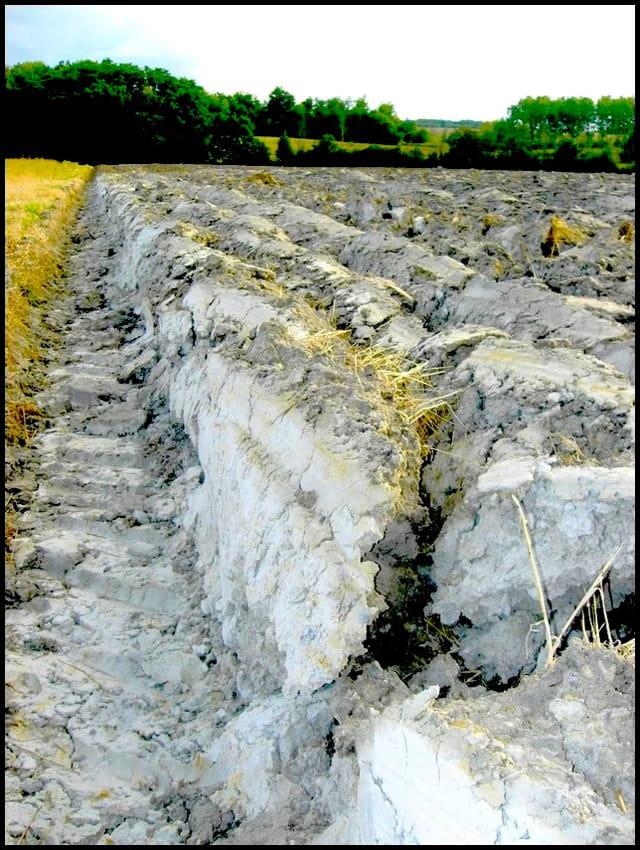 Labour sur champ de fossiles