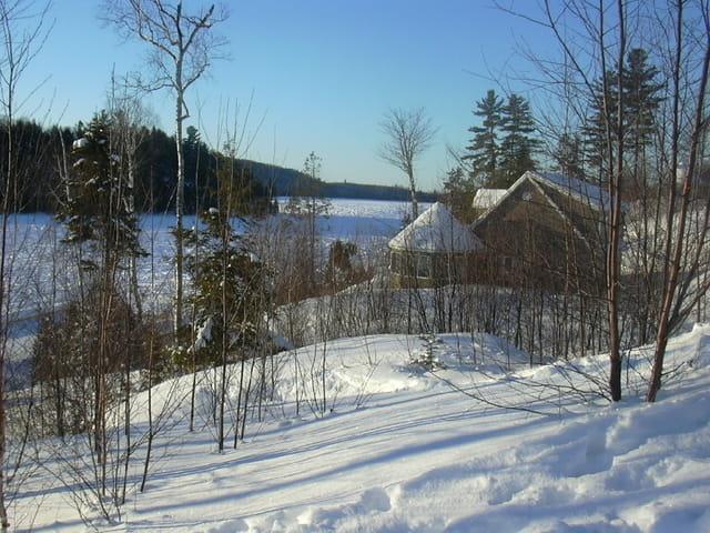 Lac canadien gelé