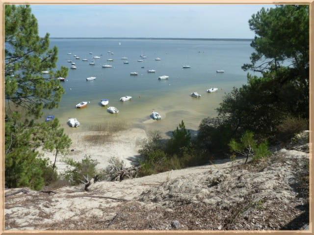 Lac d'hourtin