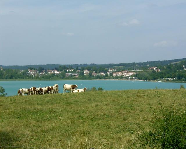 Lac de Clairvaux