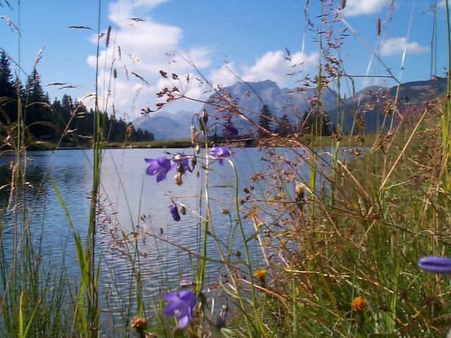 Lac de Mouille