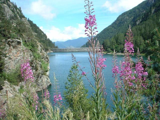 Lac des Mèches