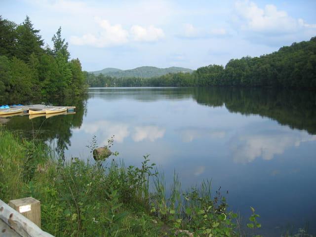 Lac et forêts