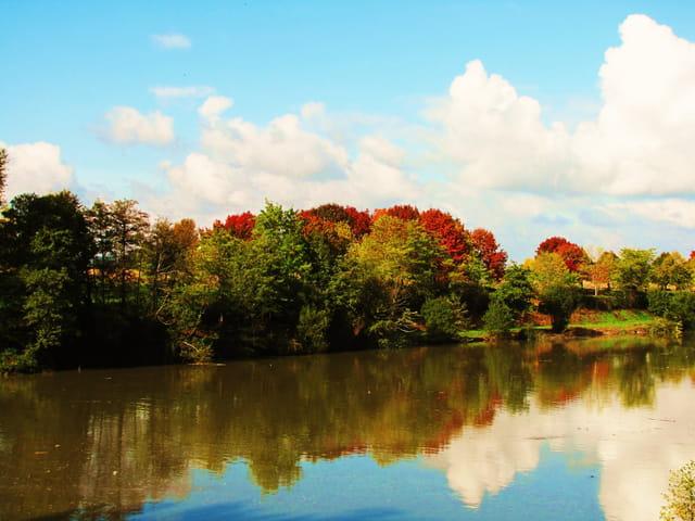 Lac et reflets d'automne.