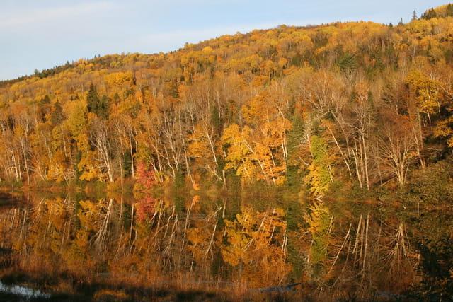Lac miroir et couleurs d'automne
