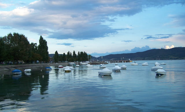 Lago trasimeno (pg)