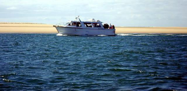 le bateau promenade le long du banc d'Arguin