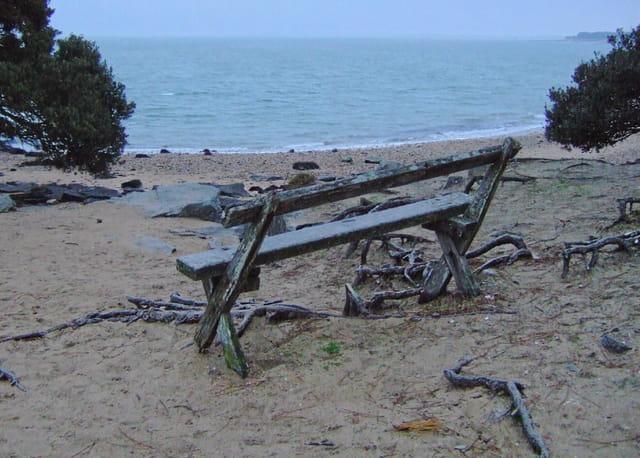 Le bois de la chaise