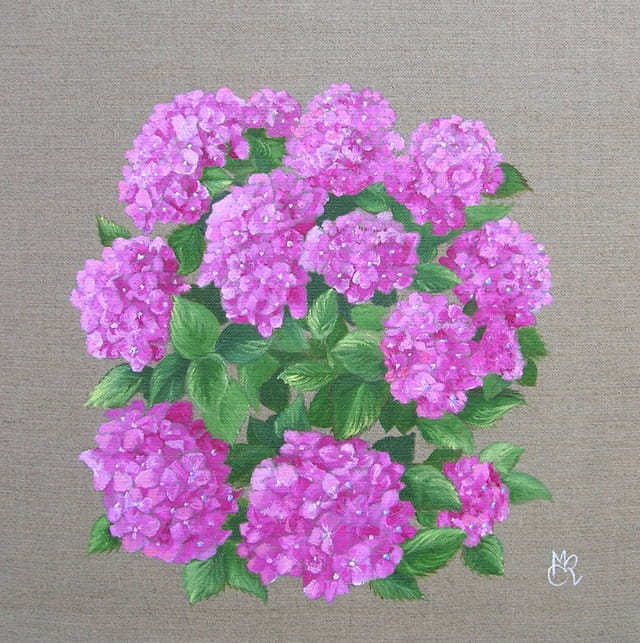 Le bouquet d'hortensias