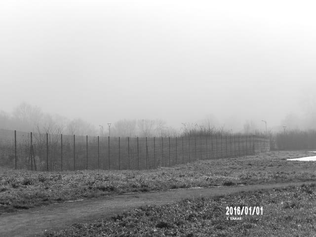 Le brouillard se lève (noir et blanc)
