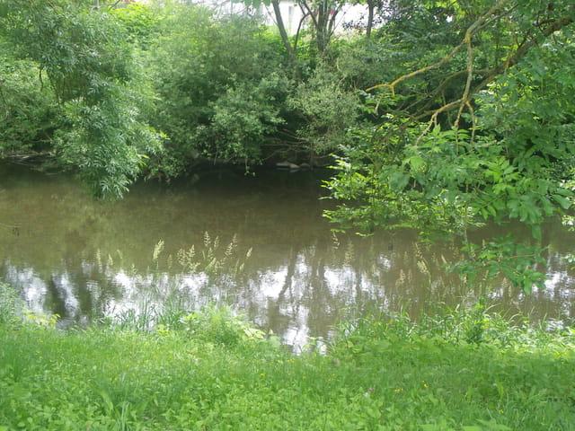 Le calme de la rivière