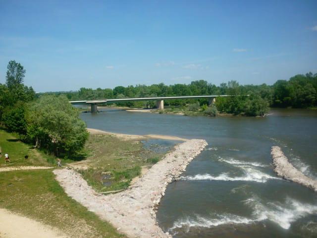 le canal latéral à la Loire