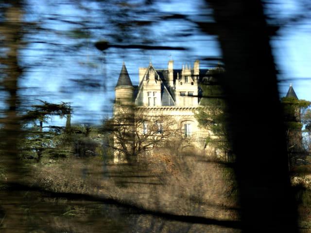 Le château de la Belle aux bois dormant