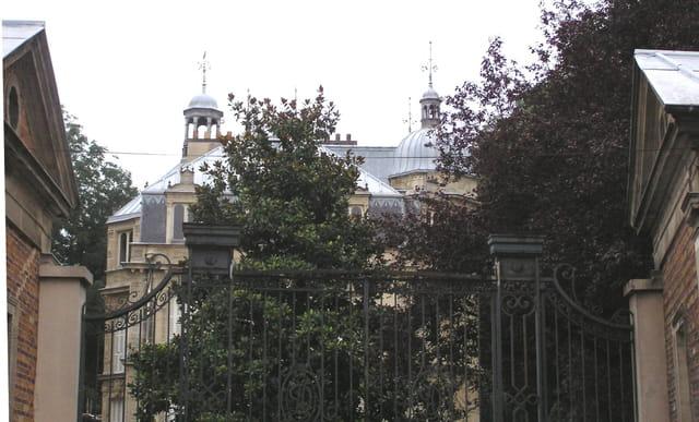 Le Château de Monte-Cristo (dans les arbres)
