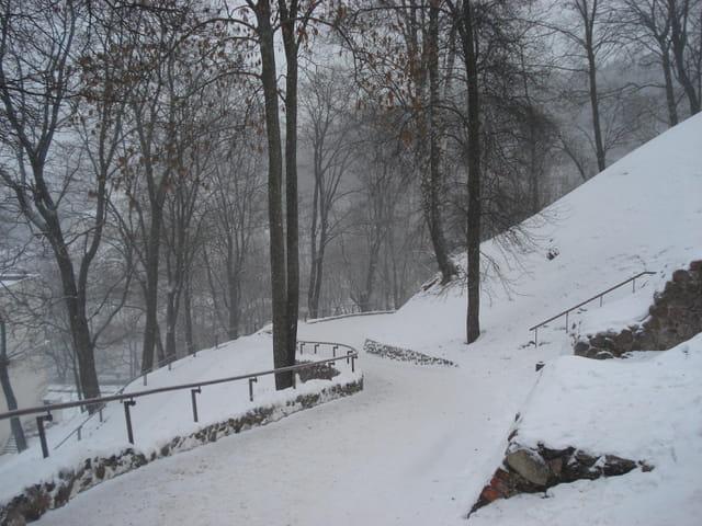 Le chemin Vers le chateau Gediminas