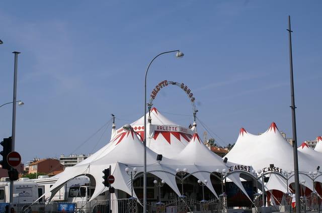 Le cirque est dans ma ville