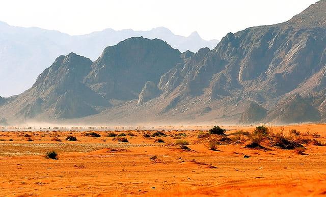 Le désert rouge du Wadi Rum