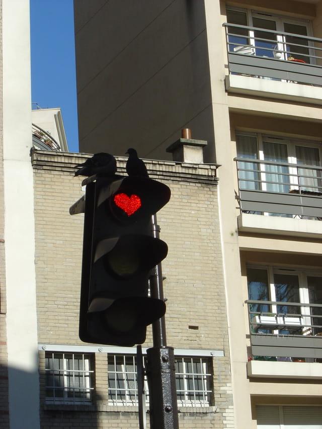 Le feu de l'amour