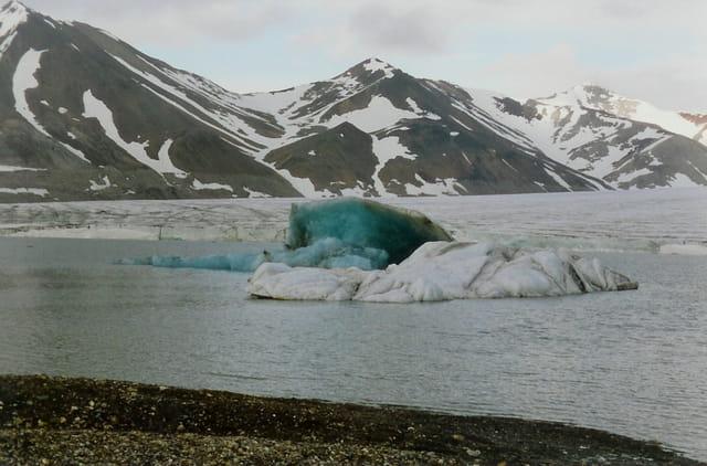 Le glacier de Bellsund