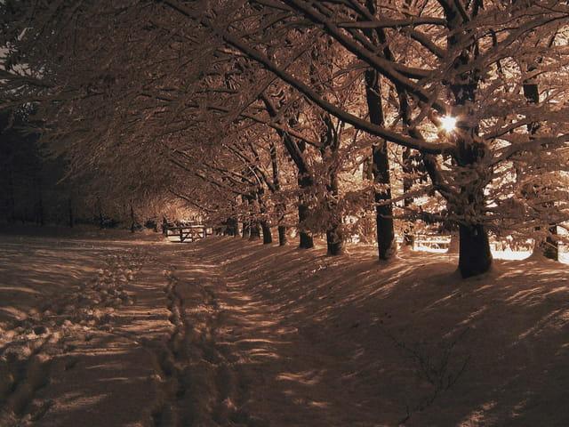 Le havre sous la neige la nuit