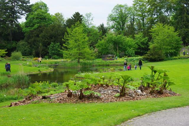 Le jardin botanique par josiane castrec sur l 39 internaute for Camping le jardin botanique limeray