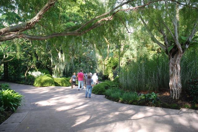 Le jardin botanique de singapour par genevieve lapoux sur for Jardin botanique singapour