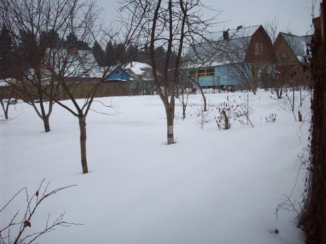 Le jardin d'une datcha en hiver