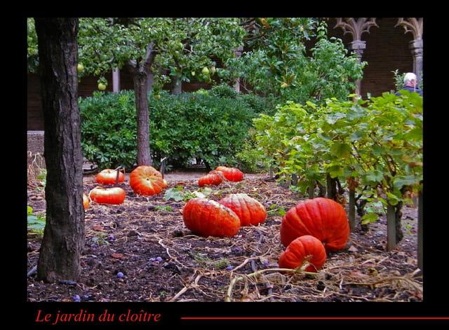 Le jardin du cloître à l'automne