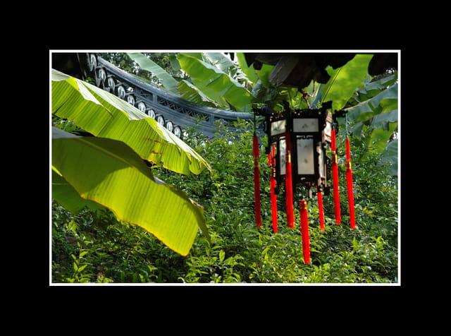 Le jardin du mandarin yu