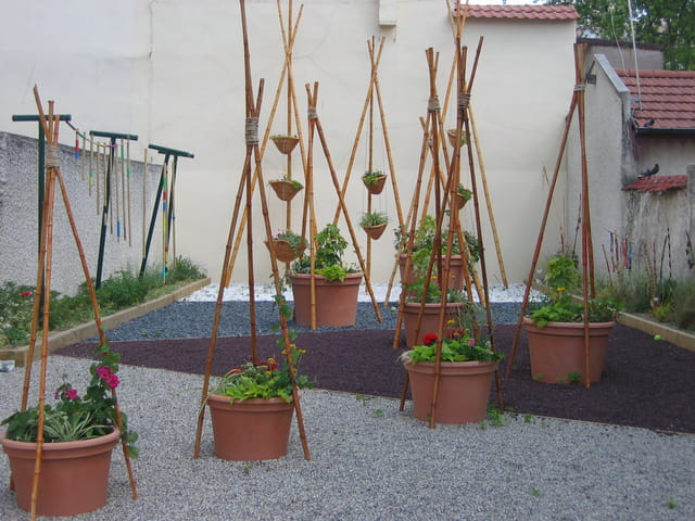 Le jardin éphémère aux cinq sens