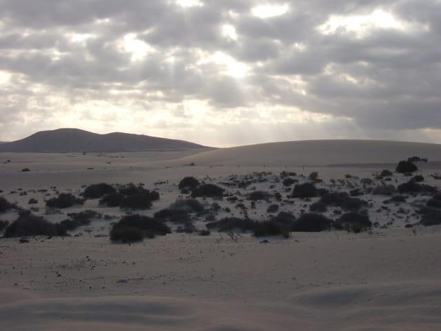 Le jour s'évanouit sur le désert