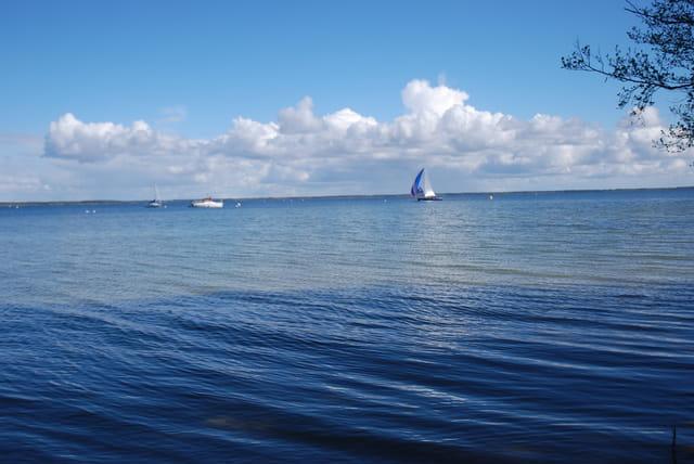 le lac de Sanguinet-Cazaux
