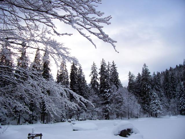 Le Lac Vert, recouvert par la neige