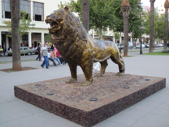 Le lion de l'Atlas
