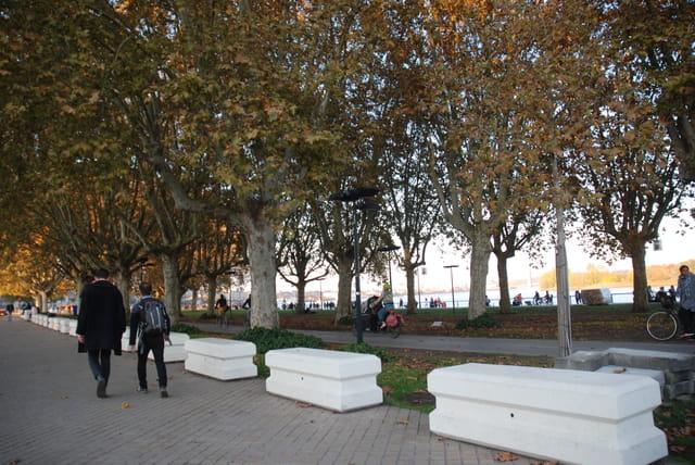 le long de la Garonne