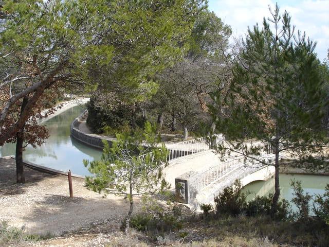Le long du Canal de Provence.