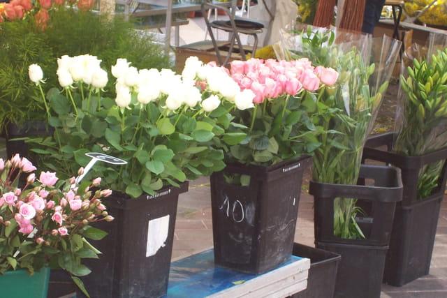 Le marche aux fleurs de nice